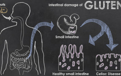 What Happens To Your Boby When You Have Celiac Disease